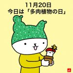2019/11/20イチニチヒトネコNo.3115【多肉植物の日】